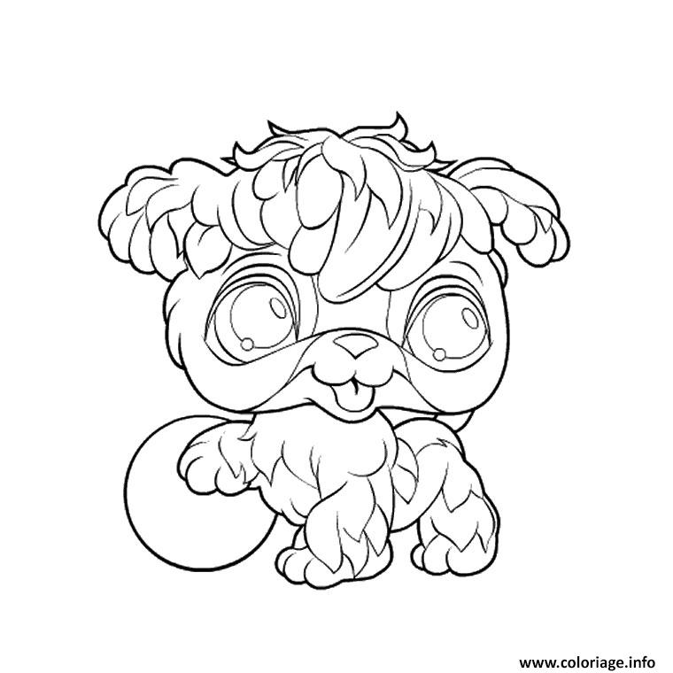 Coloriage Animaux Mignon Pet Shop Lion Dessin à Imprimer