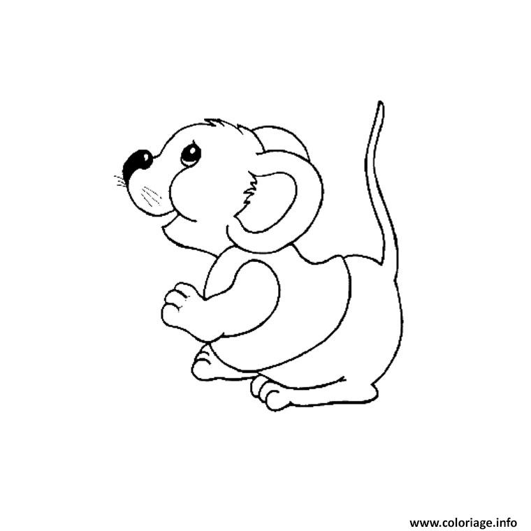 Coloriage animaux mignon rigolos dessin - Dessins de chats rigolos ...
