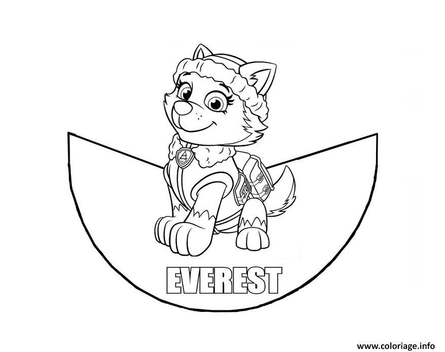Coloriage Cone Pat Patrouille Everest Dessin