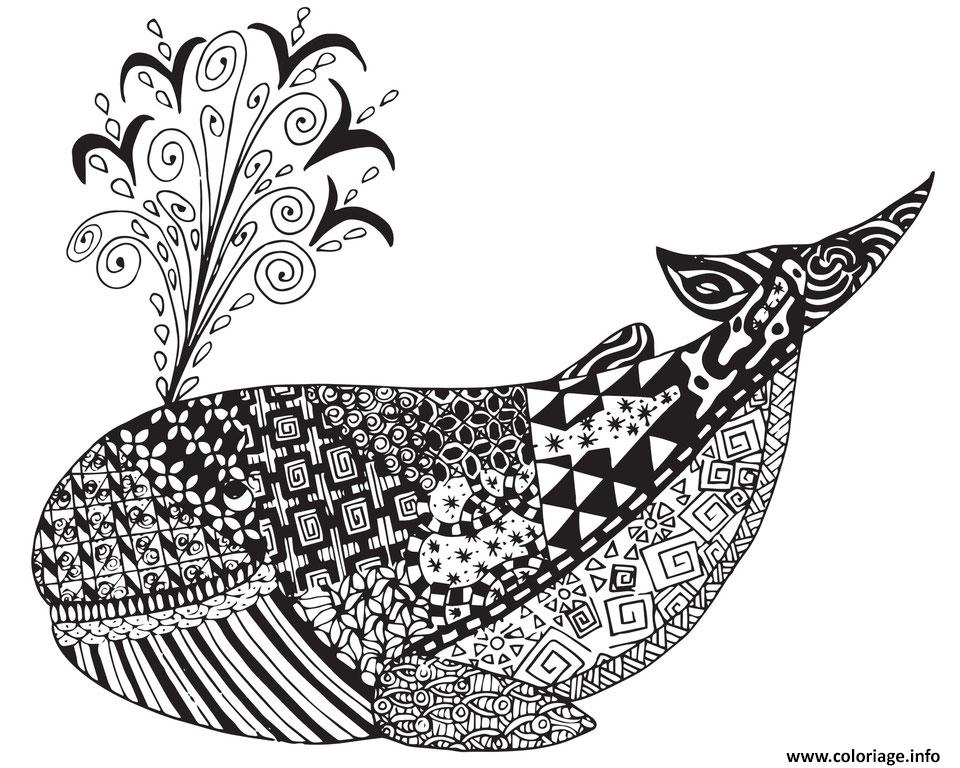 Coloriage A Imprimer Baleine.Coloriage Adulte Animaux Baleine Ocean Zen Dessin