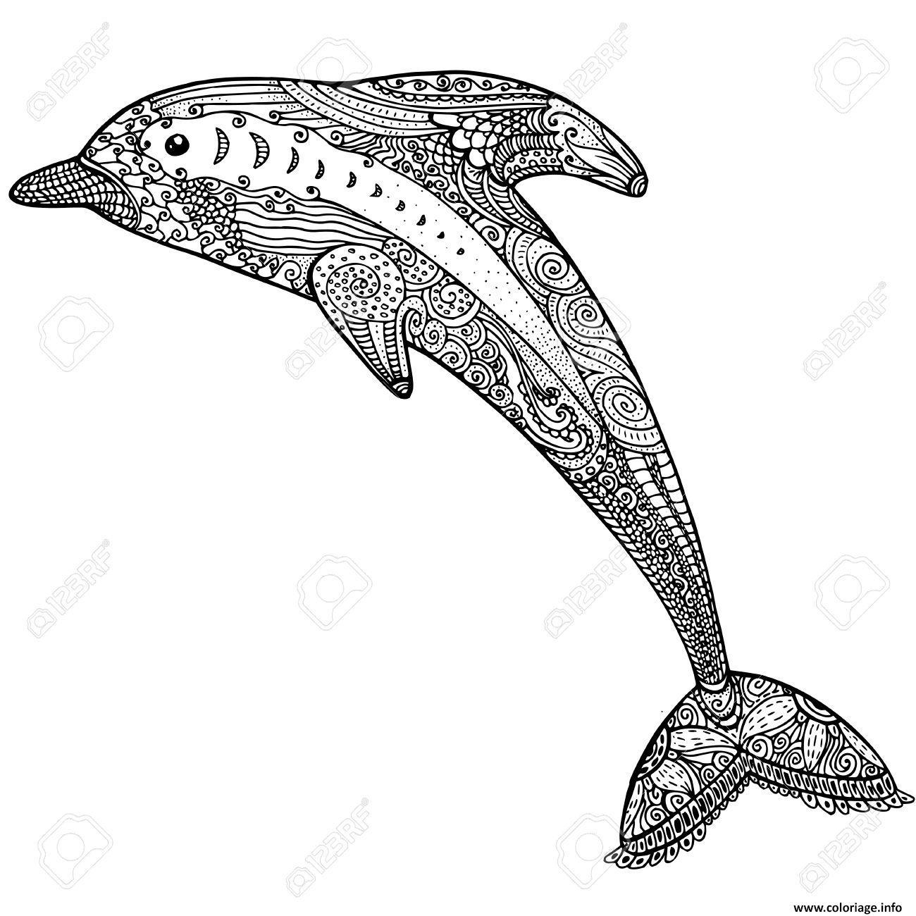 Coloriage dauphin animaux dessin adulte zen difficile dessin - Dauphin a dessiner ...