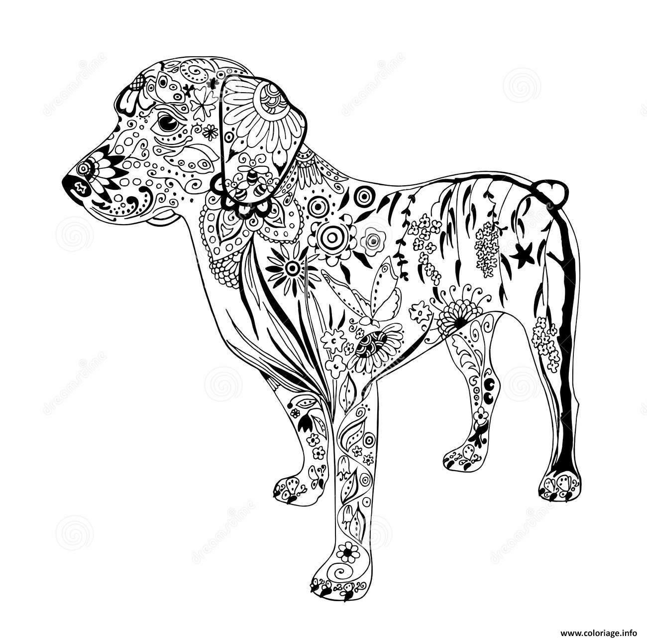 Coloriage Chien A Imprimer Pdf.Coloriage Chien Doodle Zentangle Animaux Adulte Dessin