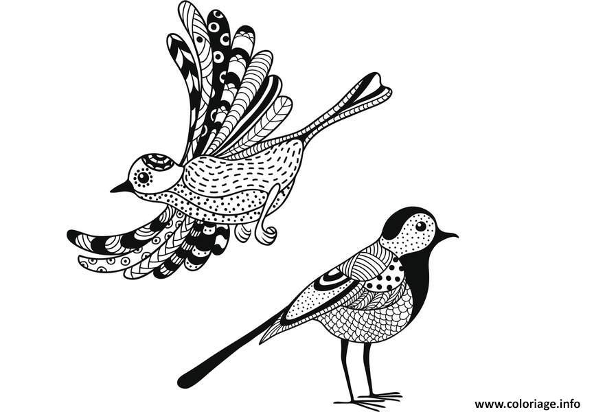 Coloriage Adulte Animaux Deux Oiseaux Nature Jecolorie Com