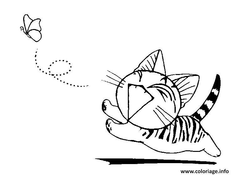 Coloriage chat chi apres un papillon dessin - Coloriage d un papillon ...