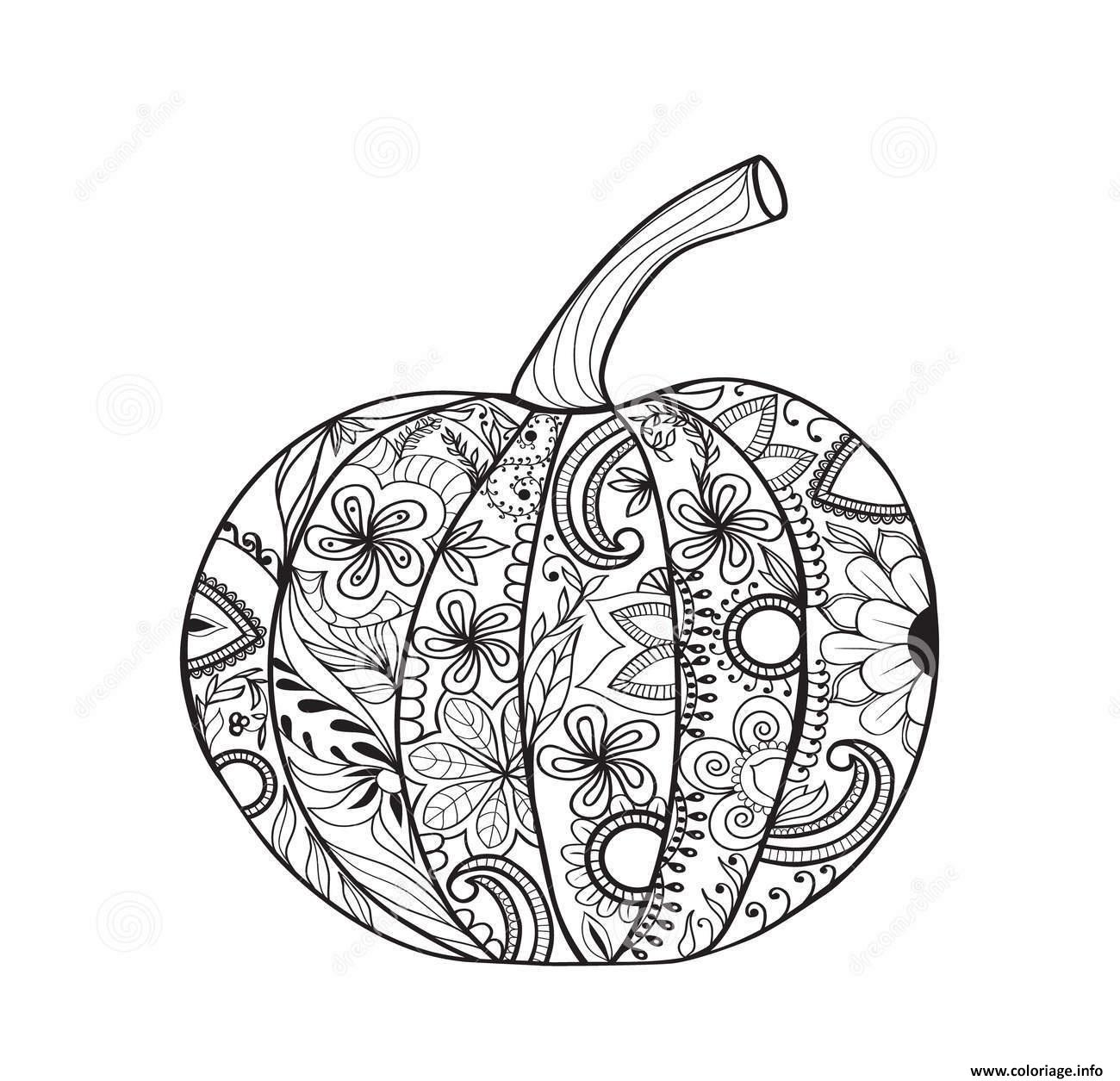 Coloriage citrouille halloween adulte simple - Citrouille a dessiner ...