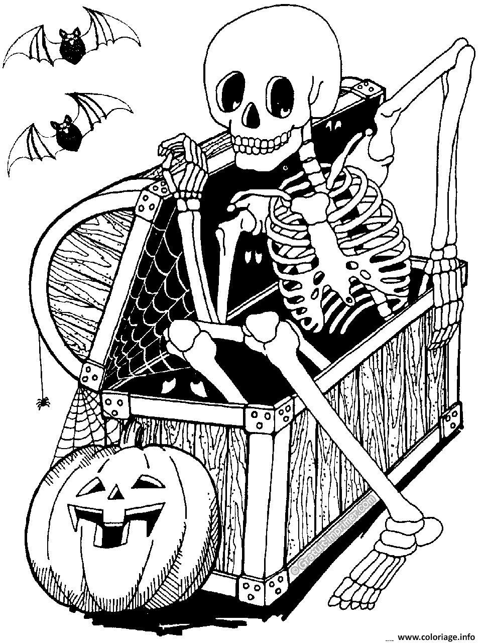 Coloriage Halloween Adulte Squelette Dessin