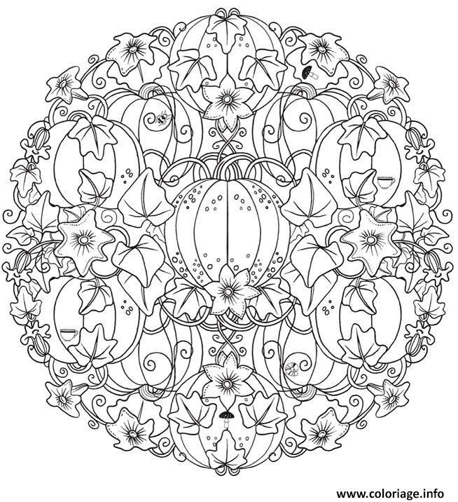 Coloriage Mandala Sorciere.Coloriage Mandala Halloween Pumpkin Citrouille Adulte Dessin