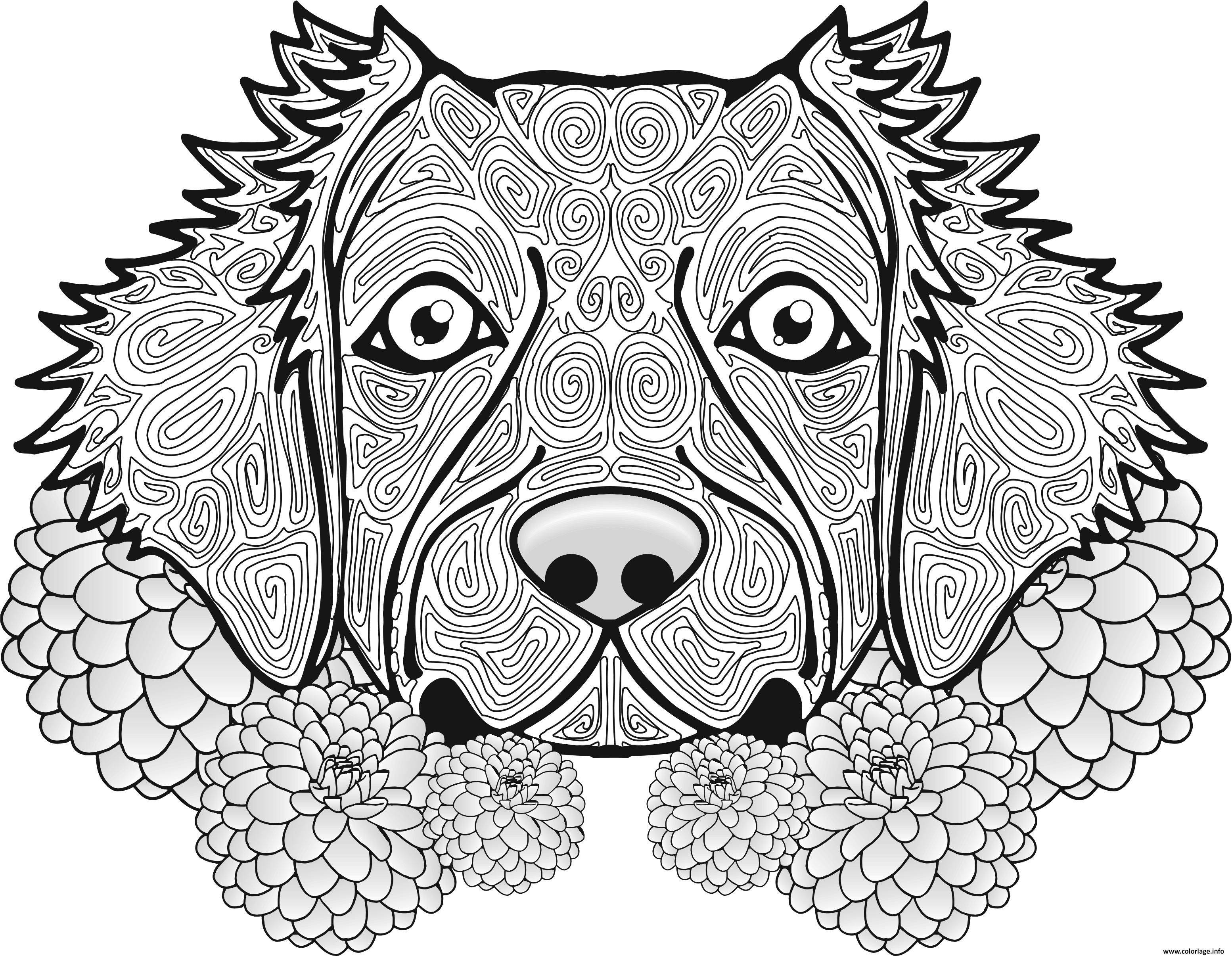 Coloriage Adulte Chien Dog Animal Jecolorie Com