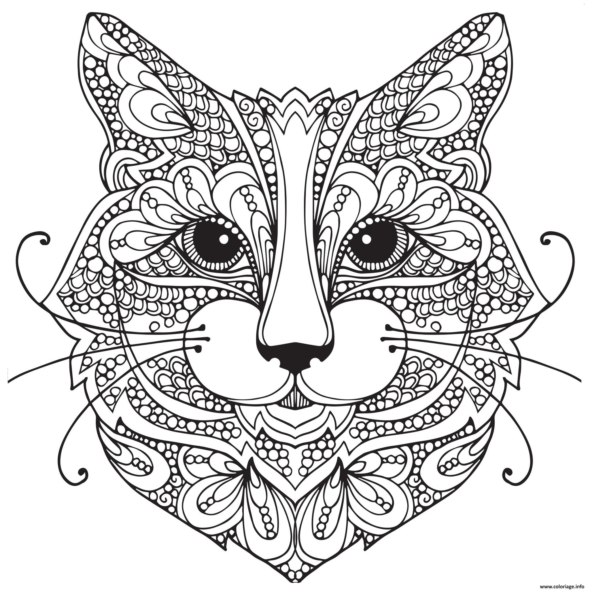 Coloriage Chat Adulte Difficile Visage Mandala Dessin