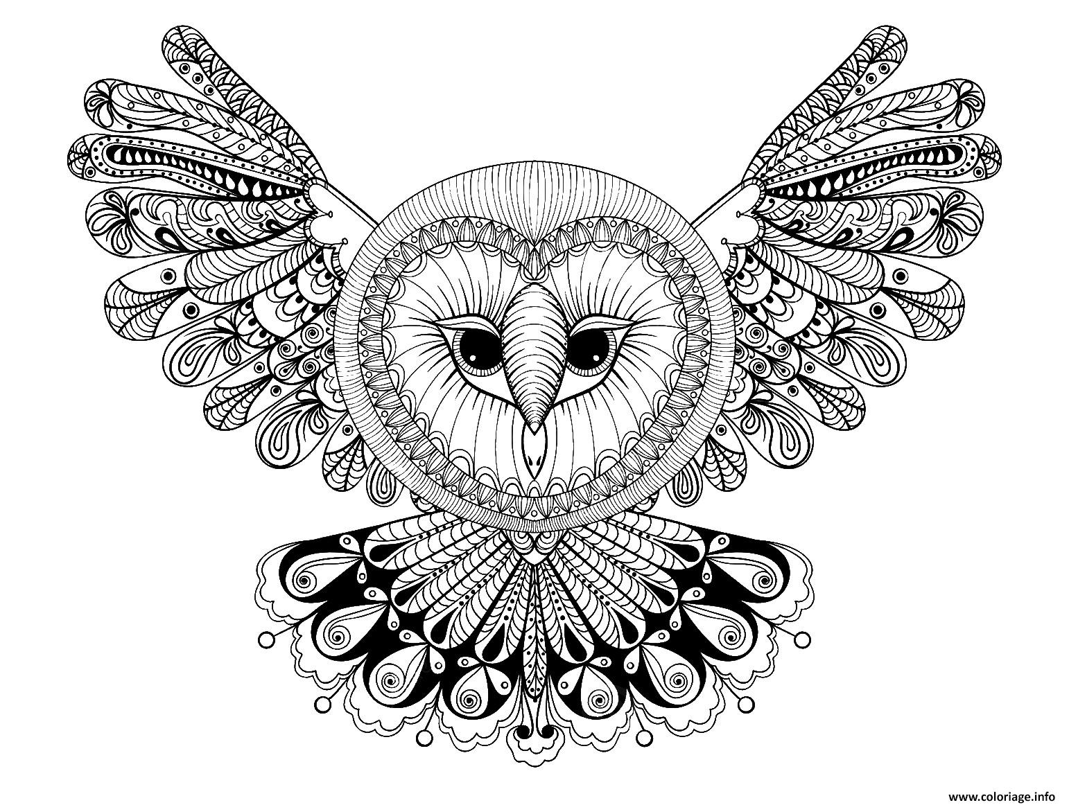 Coloriage hibou avec grande tete forme mandala adulte animaux dessin - Coloriage de hibou ...