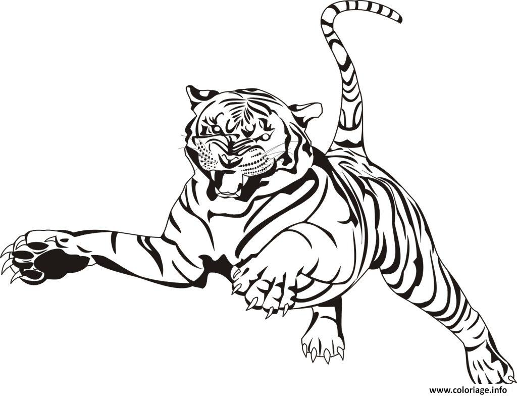 Coloriage Animaux Zoo.Coloriage Tigre Animal Zoo Adulte Dessin