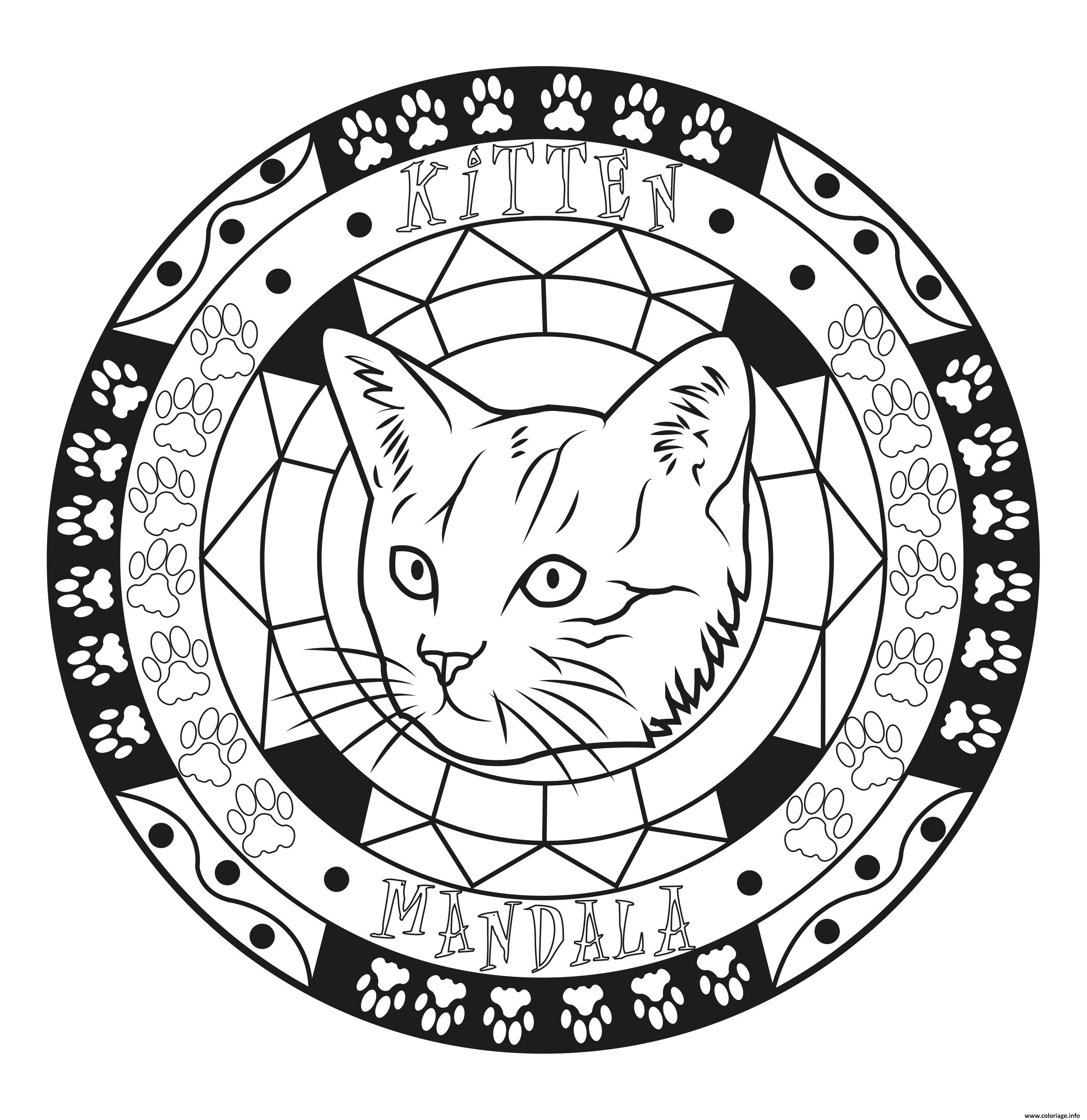 Coloriage Adulte Mandala Chat Chaton Original Facile