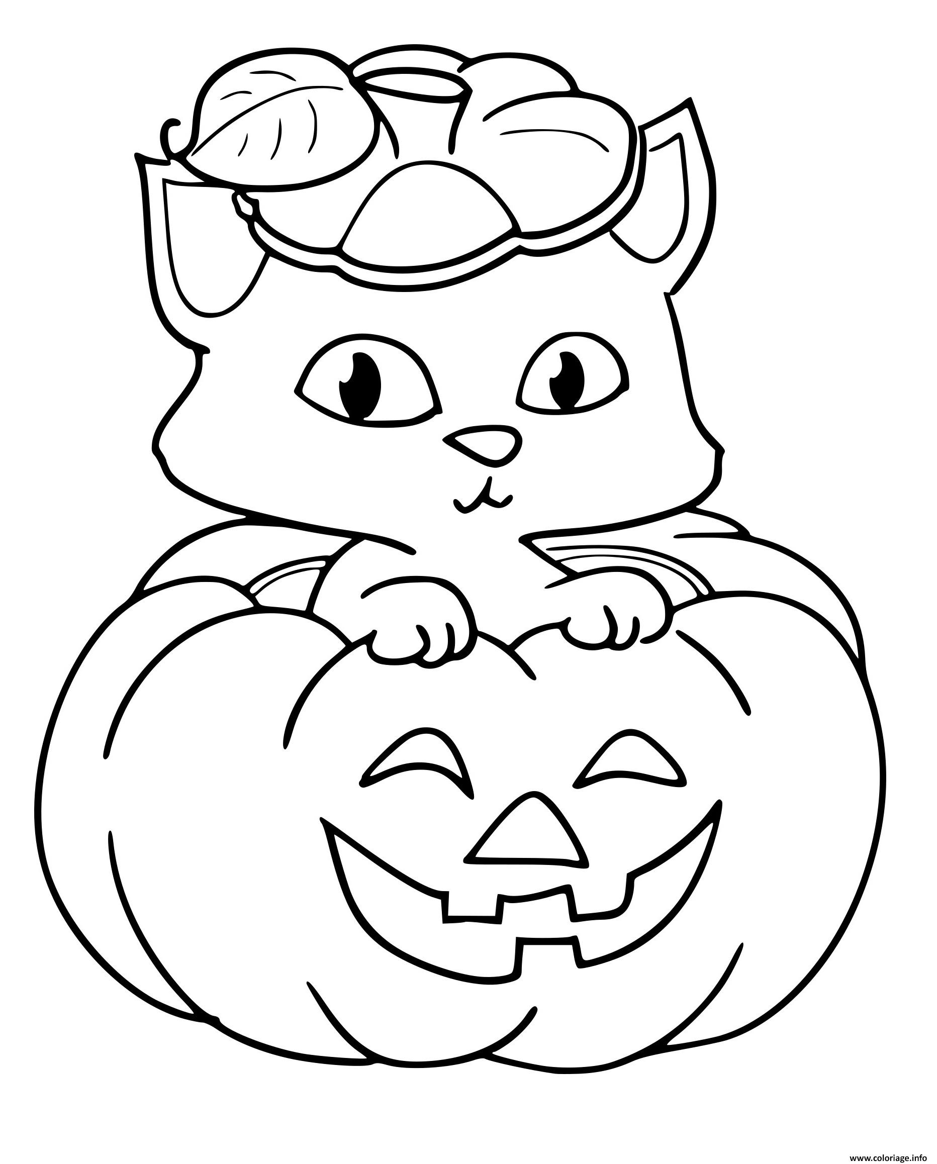 Coloriage citrouille chat halloween - Coloriage de chat ...