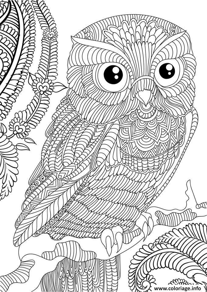 Coloriage hibou adulte animaux anti stress - Coloriage anti stress a imprimer ...