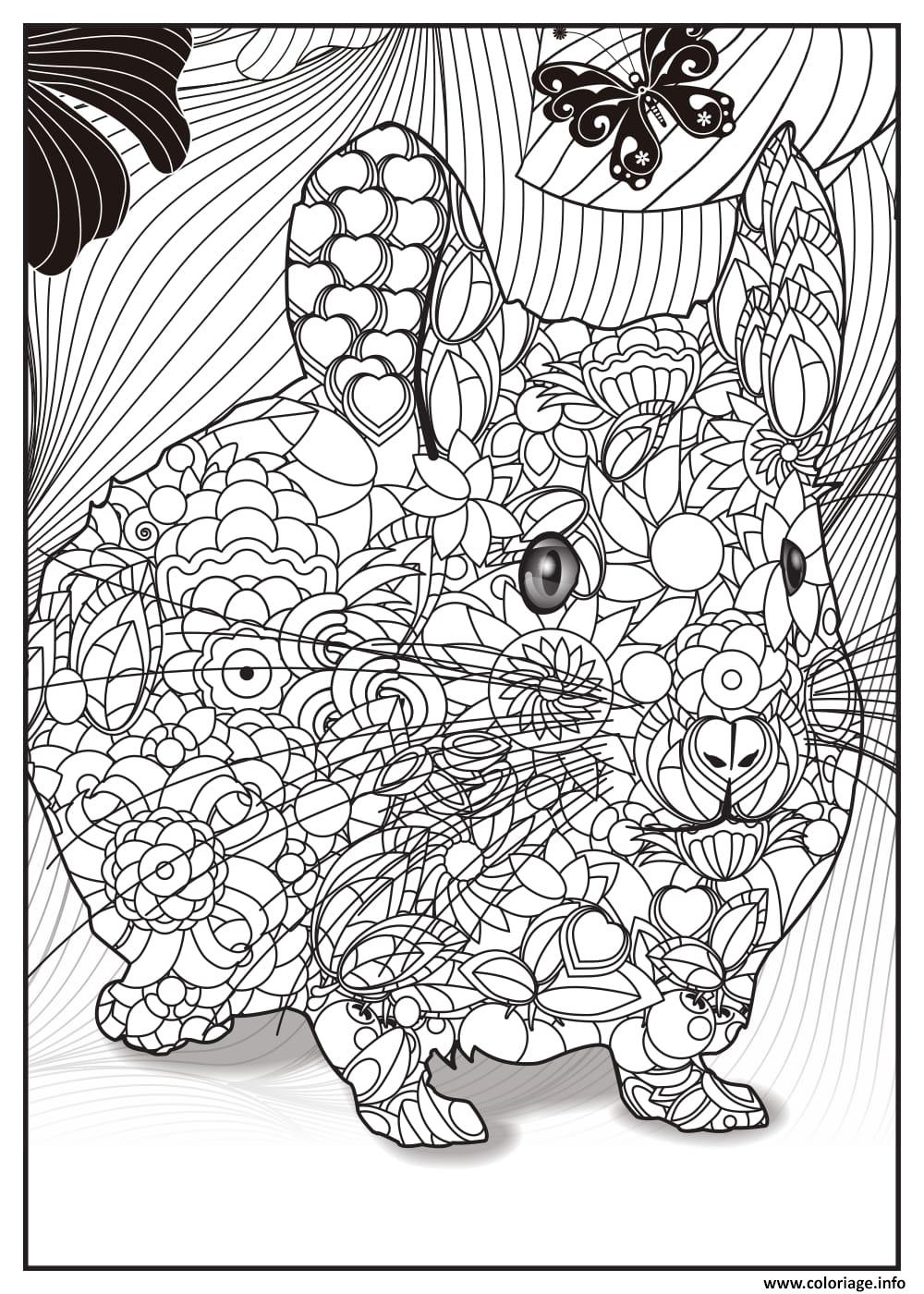 Coloriage bebe lapin adulte animaux - Image lapin a imprimer ...
