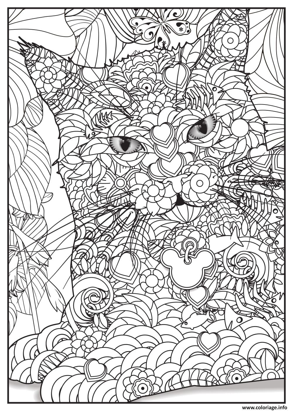 Coloriage Chat Maine Coon Adulte Animaux dessin