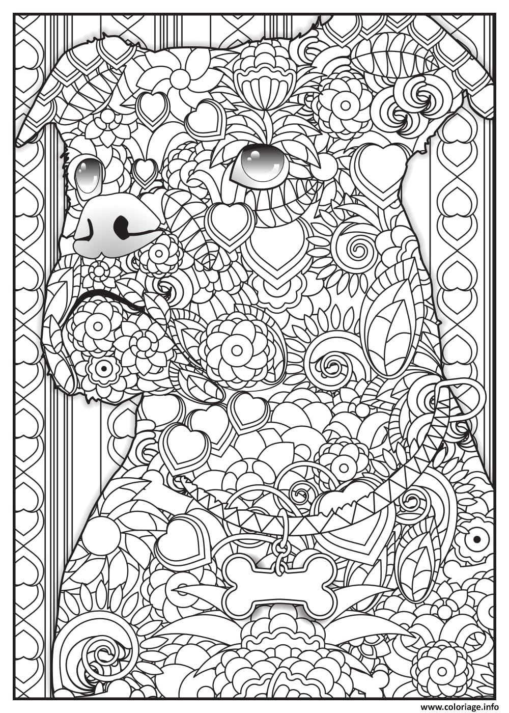 Coloriage chien bulldog adulte animaux - Dessin a colorier adulte ...