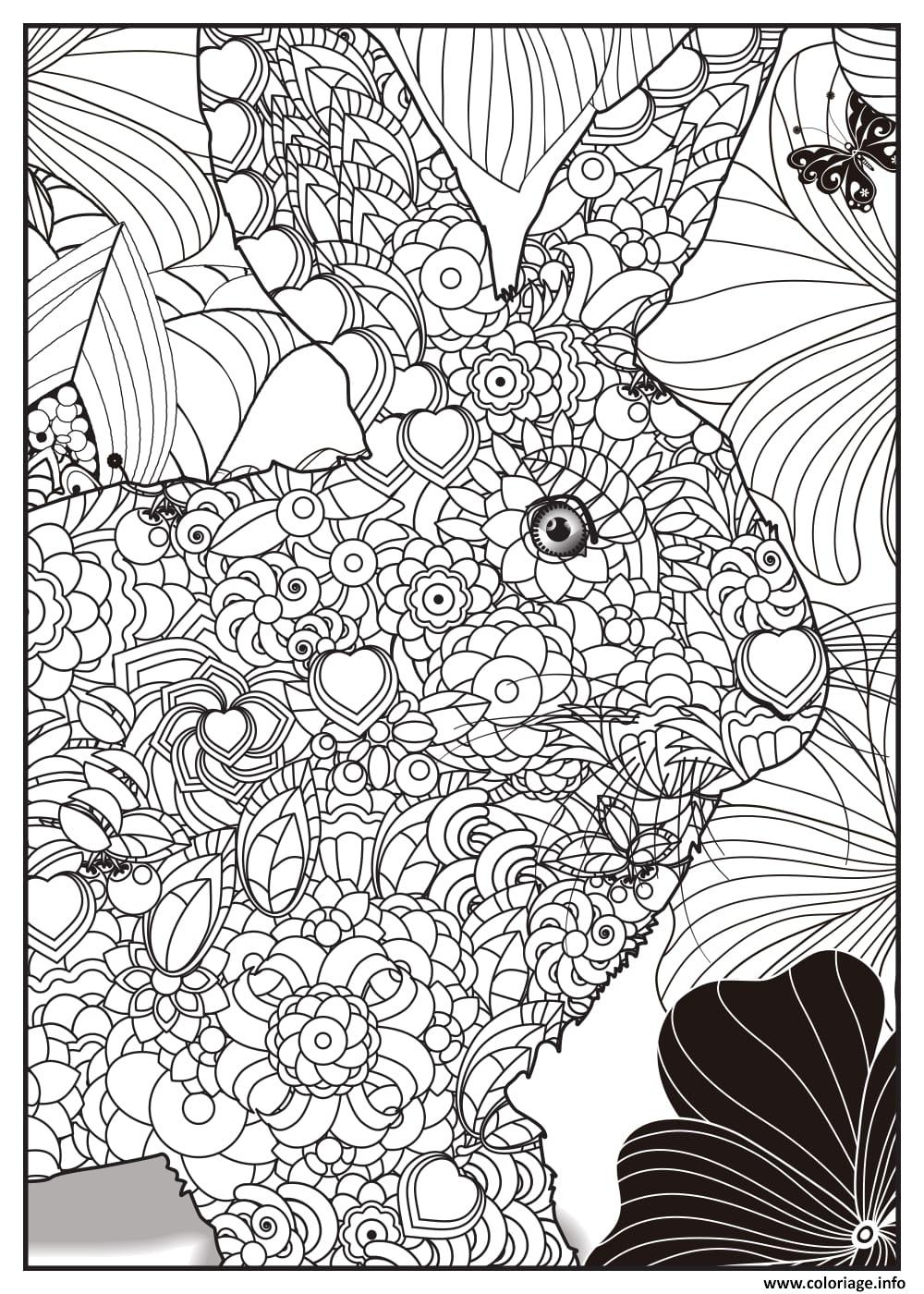 Coloriage lapin adulte animaux - Image lapin a imprimer ...