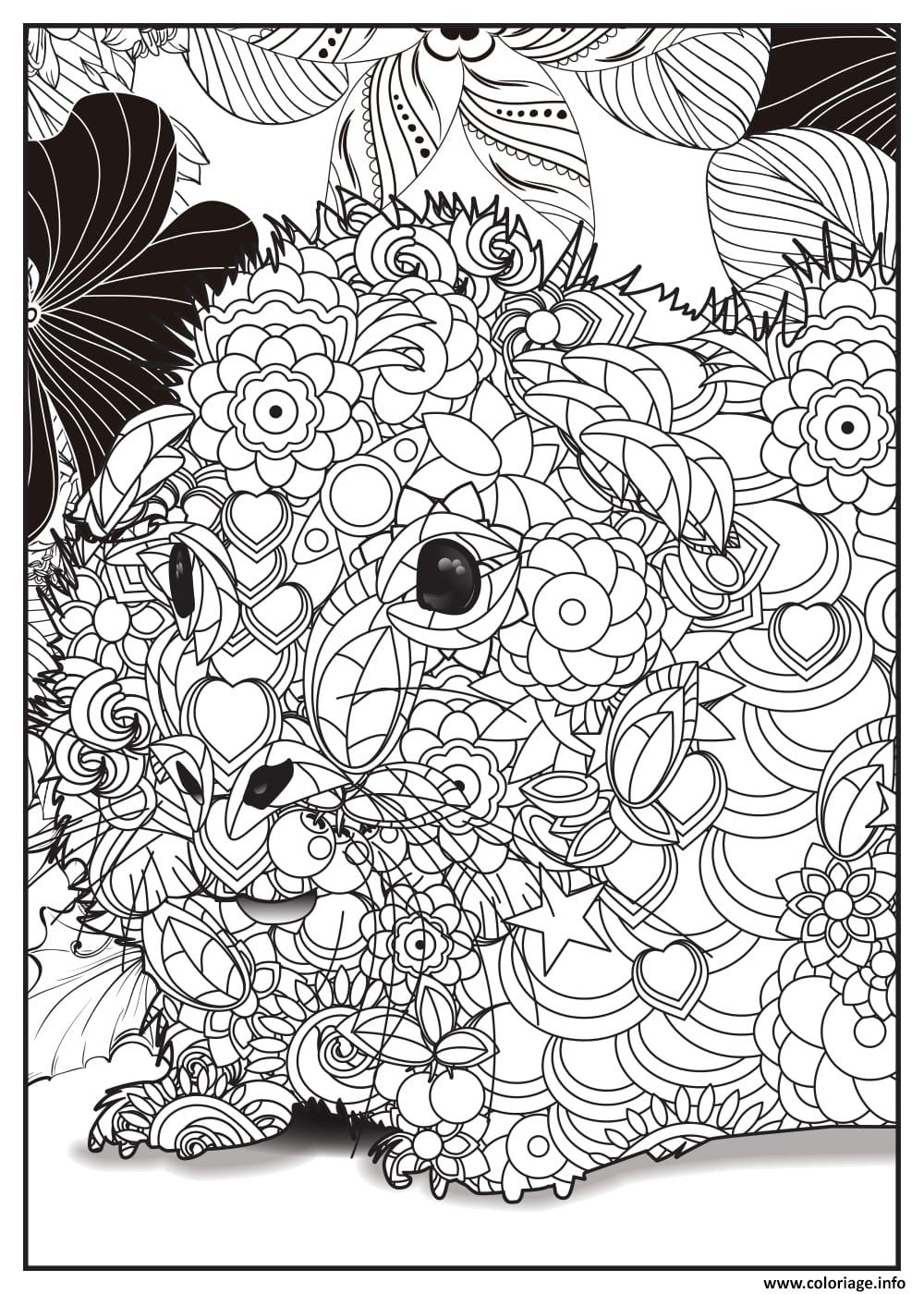 Coloriage petit hamster adulte animaux - Dessin a colorier adulte ...