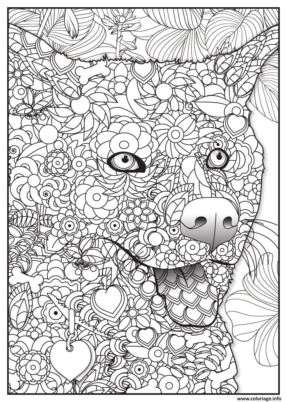 Coloriage renard fox adulte animaux dessin - Coloriage renard a imprimer ...