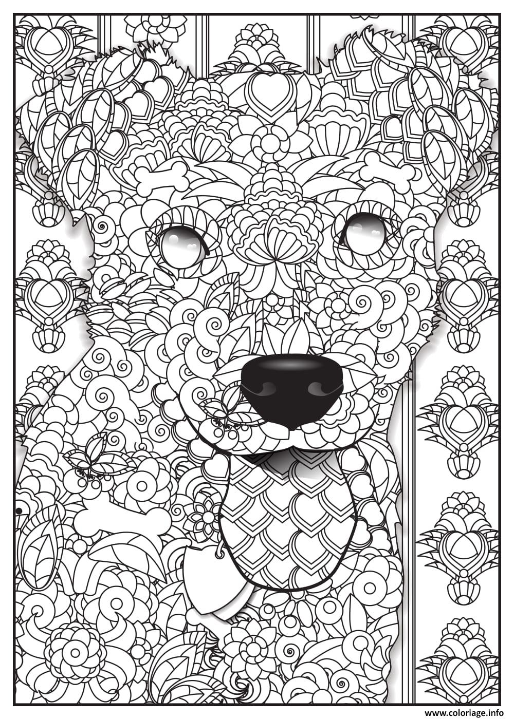 Coloriage Magique Animaux Sauvages.Lovely Coloriage Magique Loup Inspirant Coloriage Magique Loup