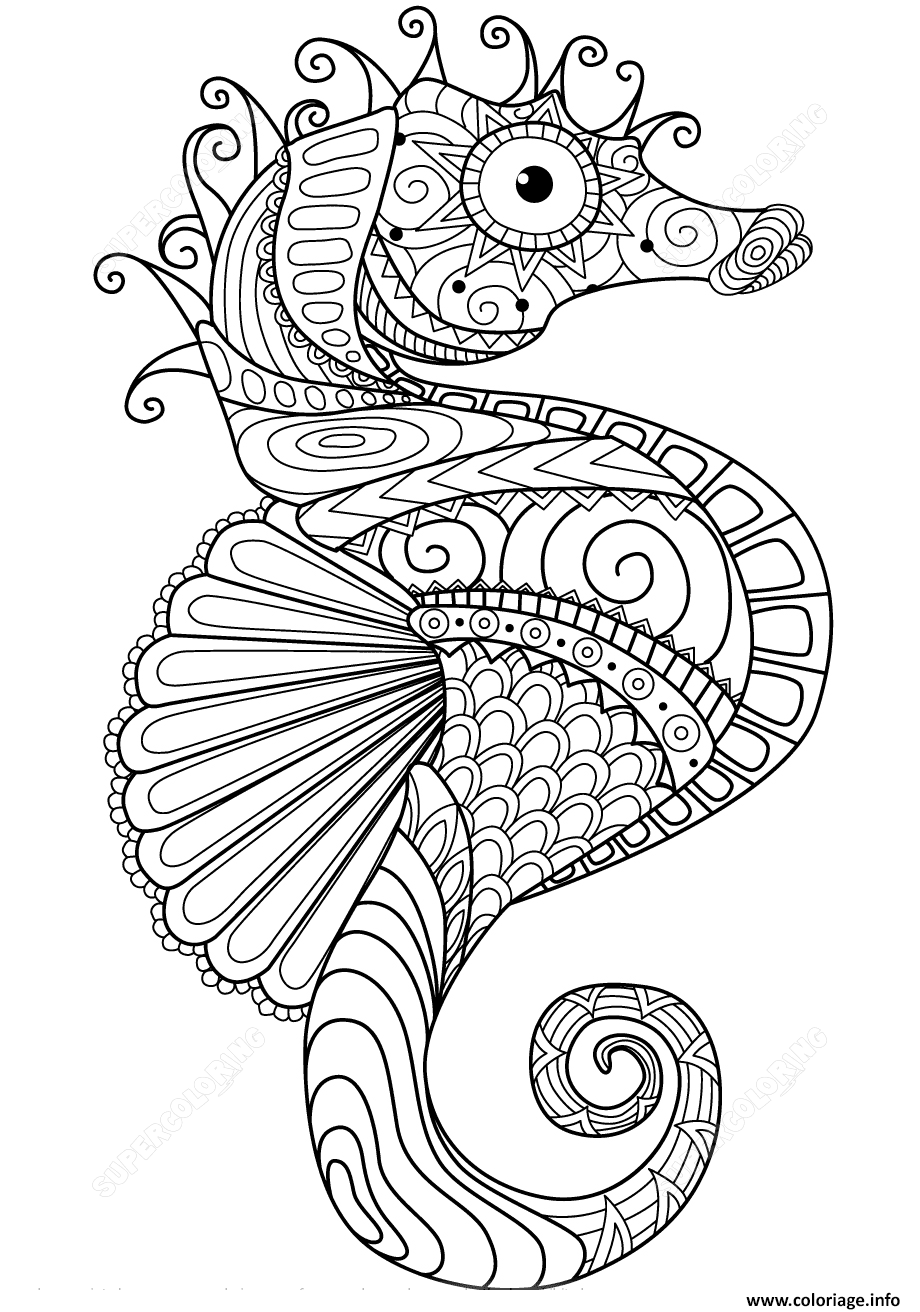 Dessin sea horse zentangle adulte Coloriage Gratuit à Imprimer