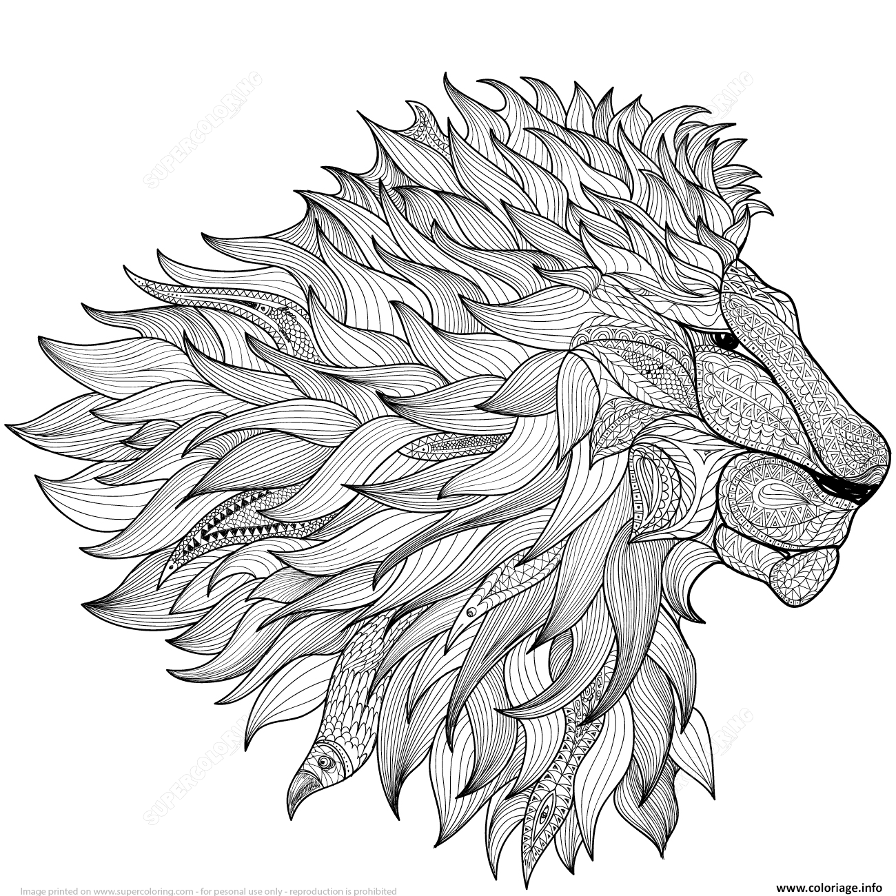 Dessin lion zentangle adulte Coloriage Gratuit à Imprimer