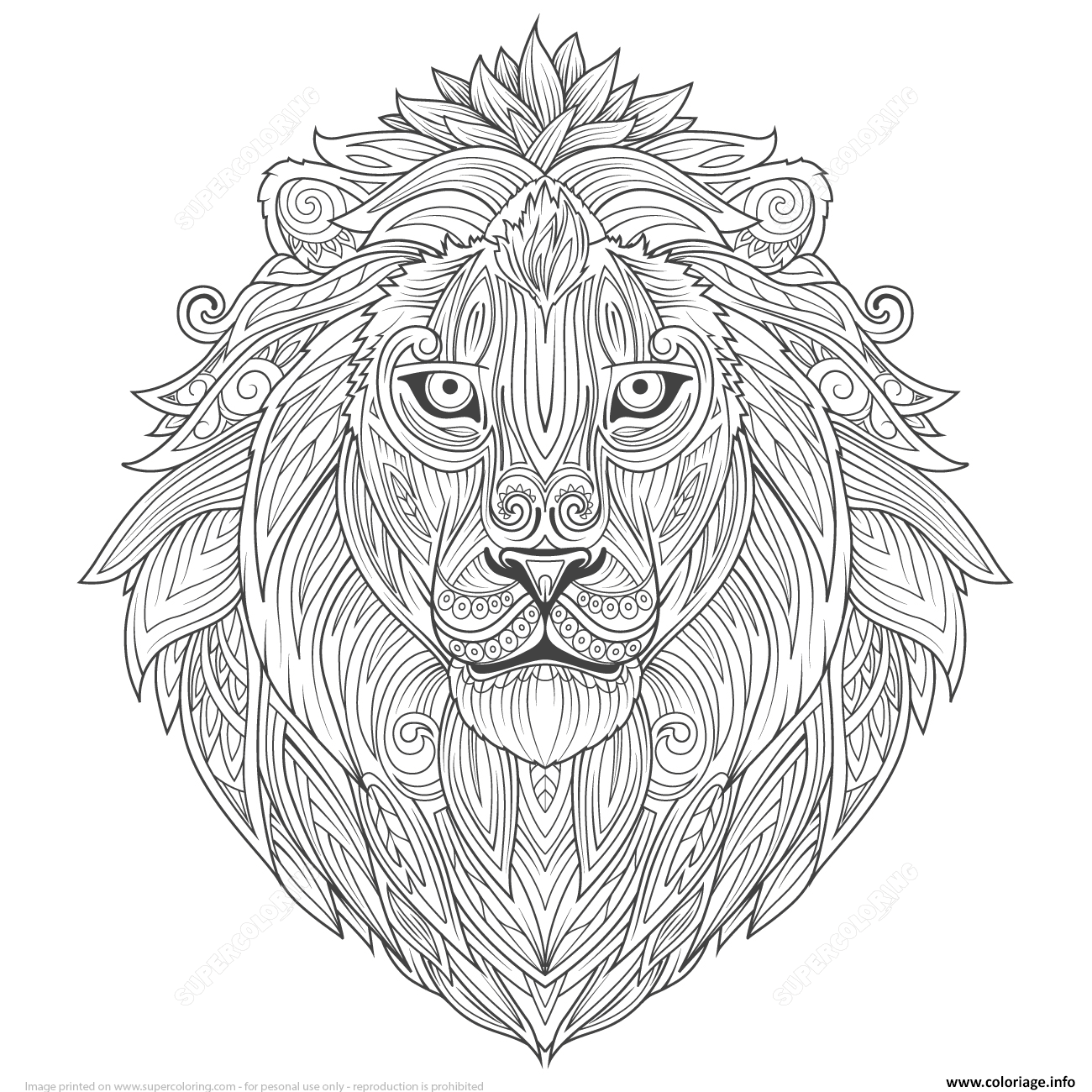 Dessin lion ethnic zentangle adulte Coloriage Gratuit à Imprimer