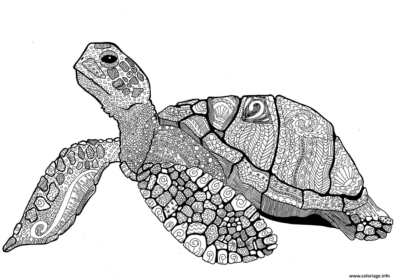 Dessin zentangle turtle adulte Coloriage Gratuit à Imprimer