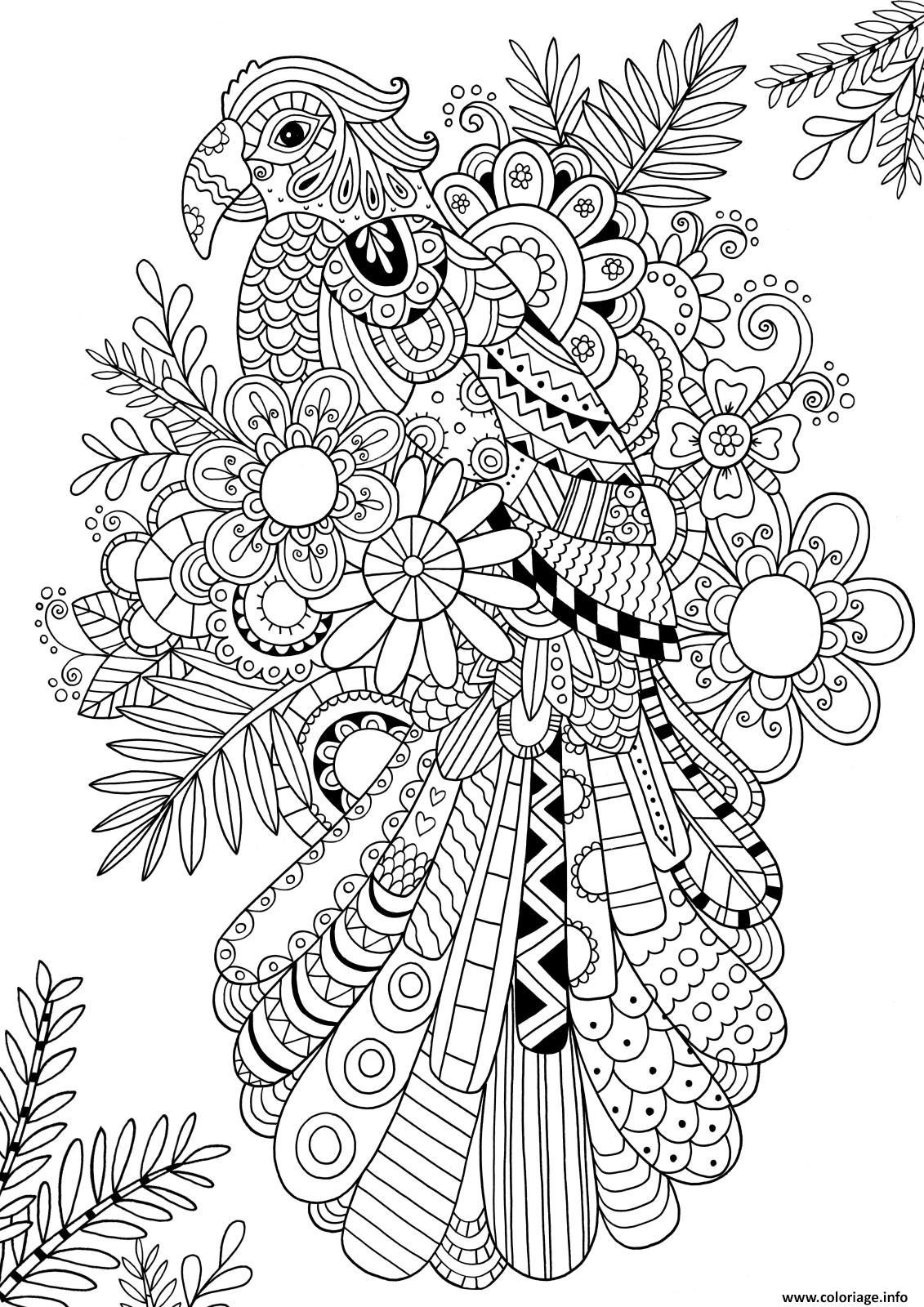 Coloriage Anti Stress Perroquet.Coloriage Zentangle Perroquet Oiseau Adulte Dessin