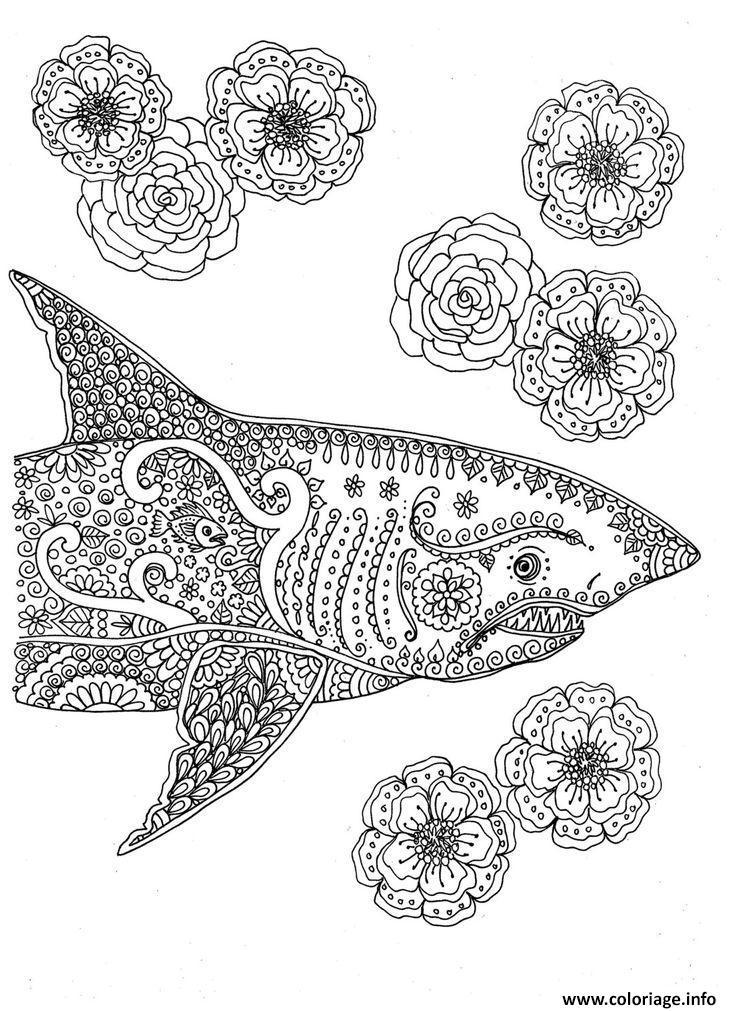 Coloriage Adulte Mandala Requin Dessin