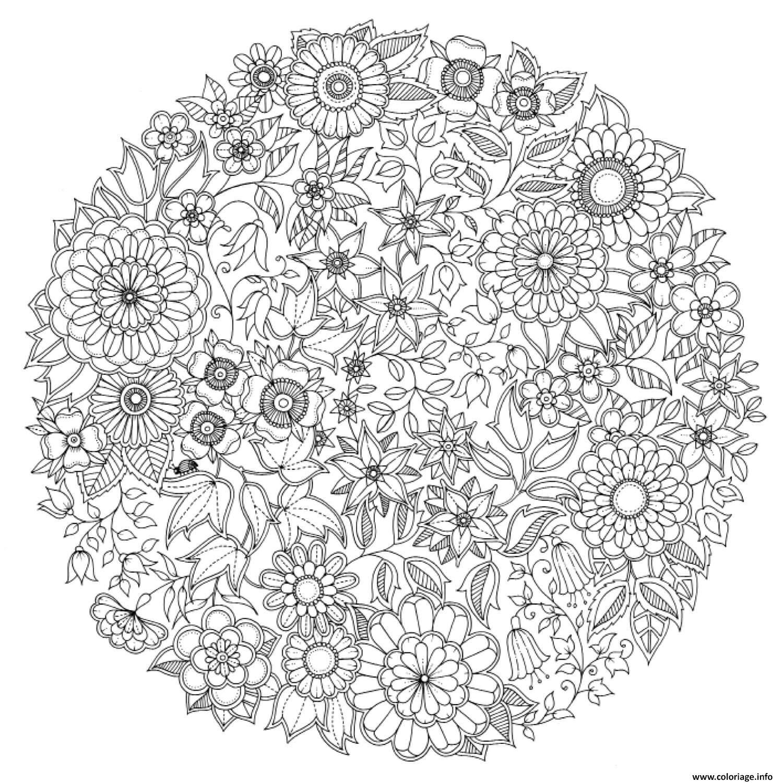 Coloriage Mandala Fleurs Antistress Adulte Rosace De Fleur dessin