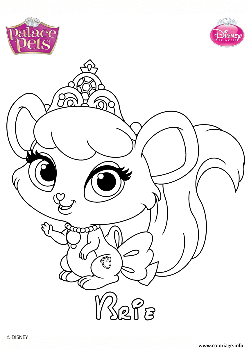 Coloriage brie princess disney dessin - Dessiner disney ...