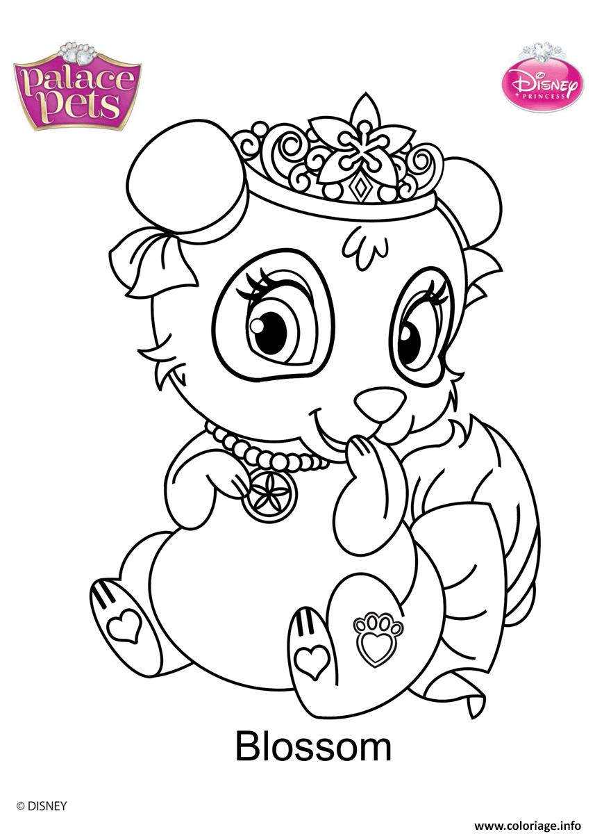 Dessin palace pets blossom disney Coloriage Gratuit à Imprimer