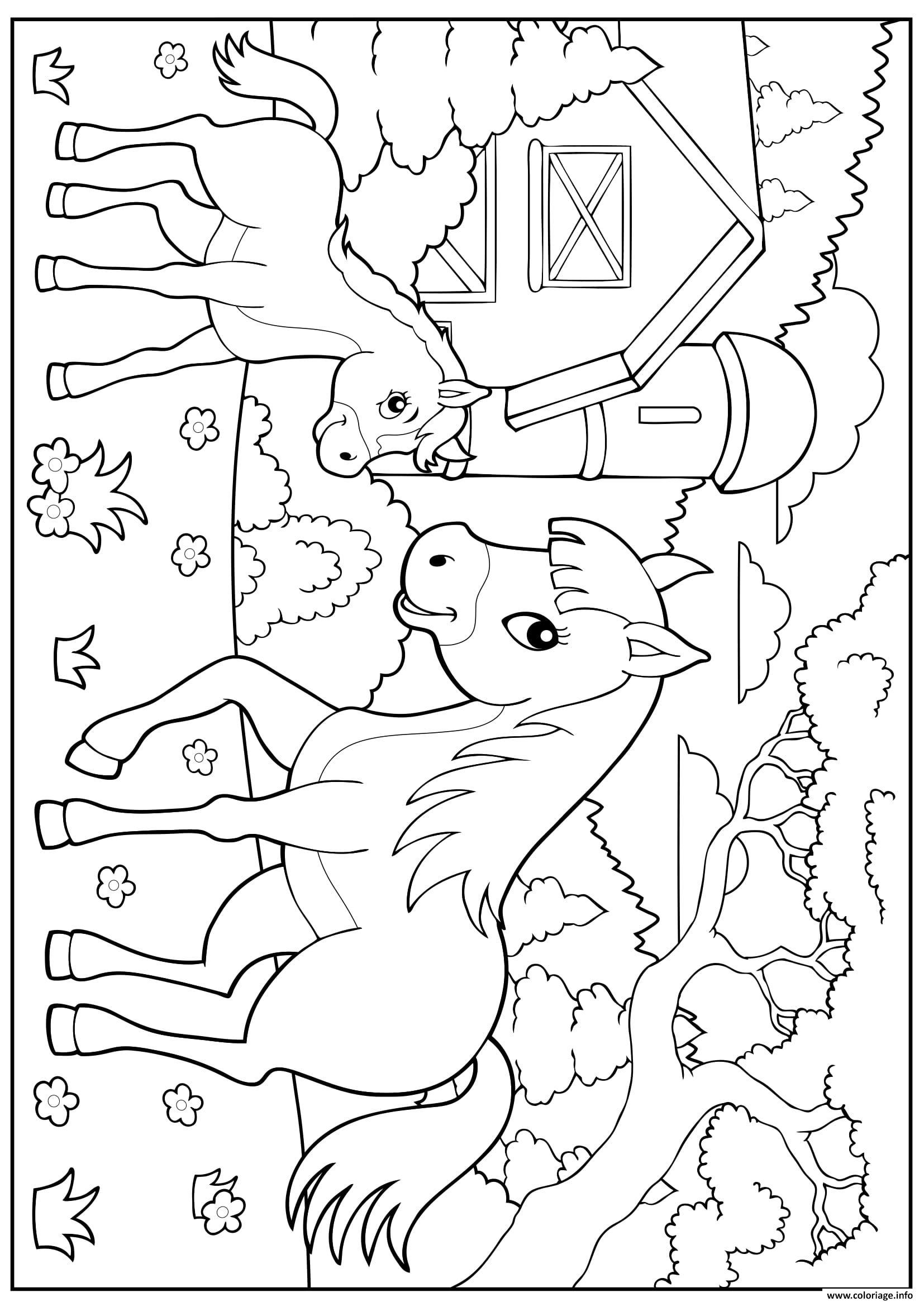 la ferme cheval poney enfant maternelle coloriage dessin