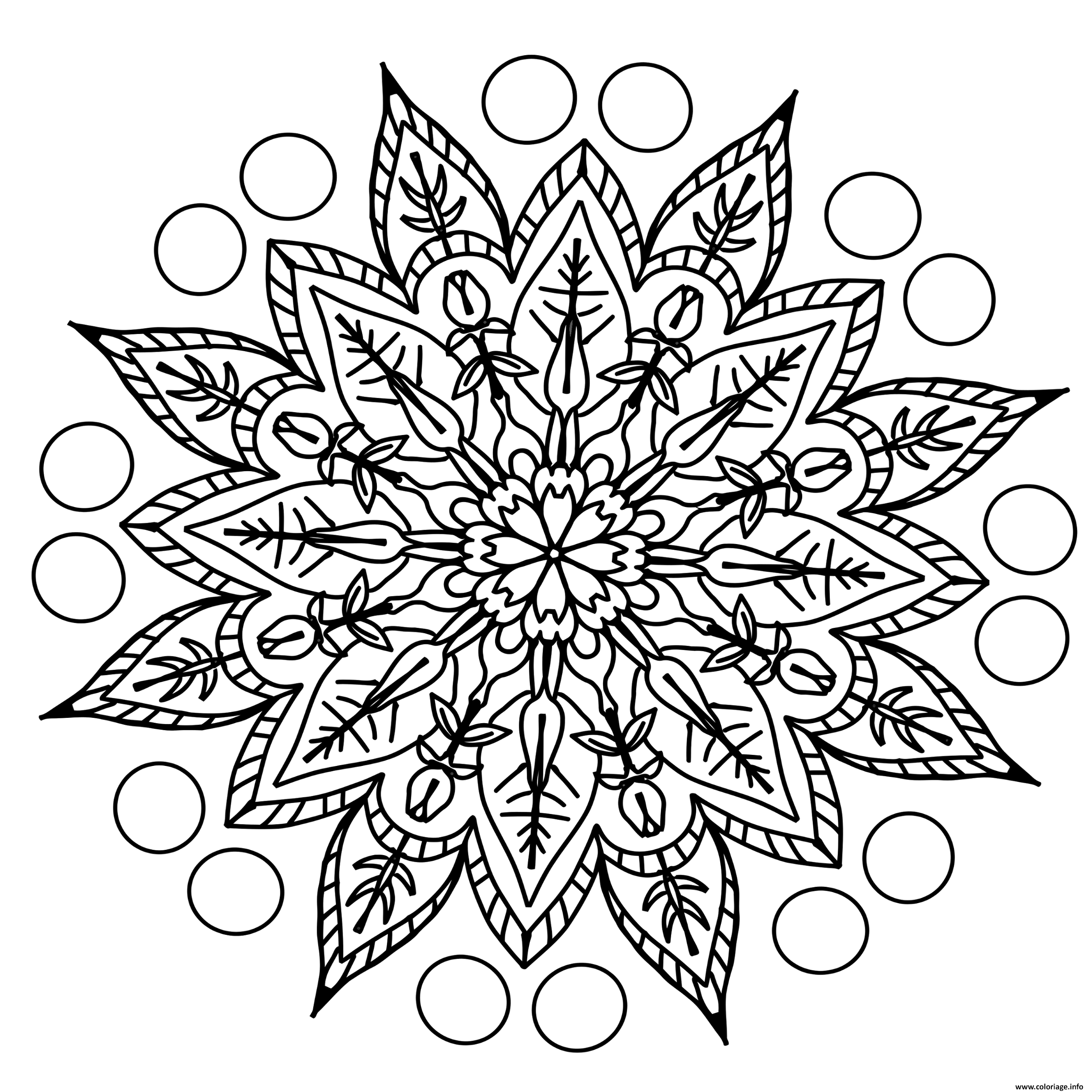 Dessin adulte zentangle Coloriage Gratuit à Imprimer