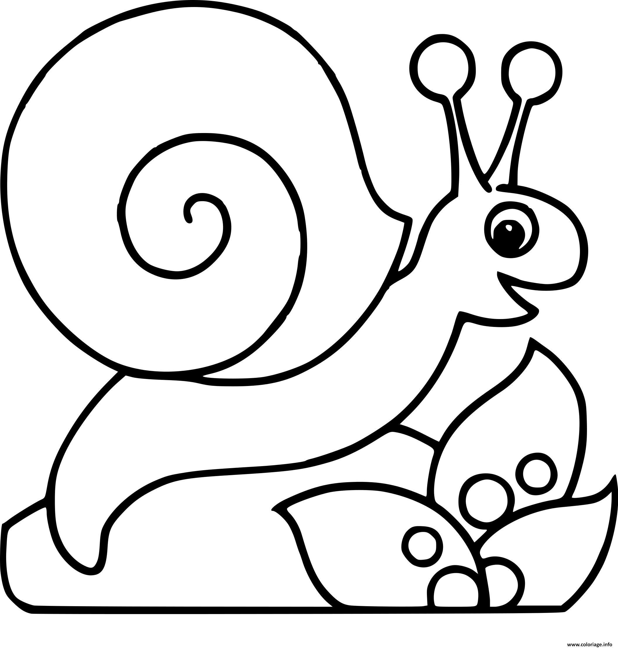 Coloriage Escargot Et Fleur Dessin Jecolorie Com