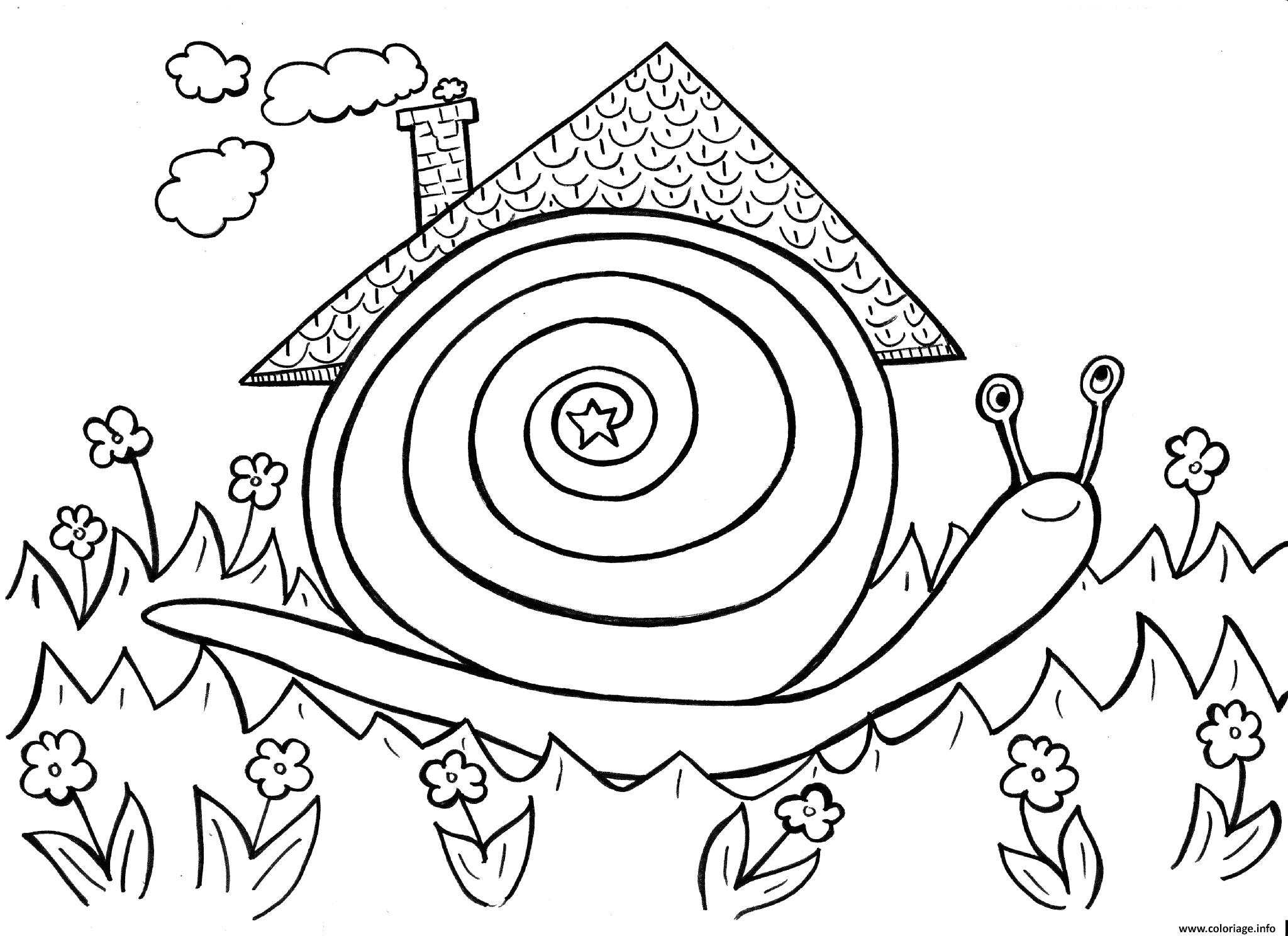 Coloriage Escargot Dans Son Habitat Naturel Dessin