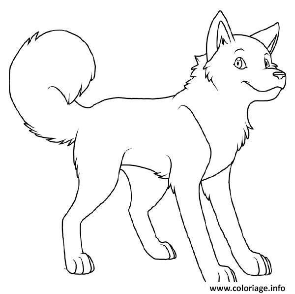 chien husky aux yeux bleue coloriage dessin