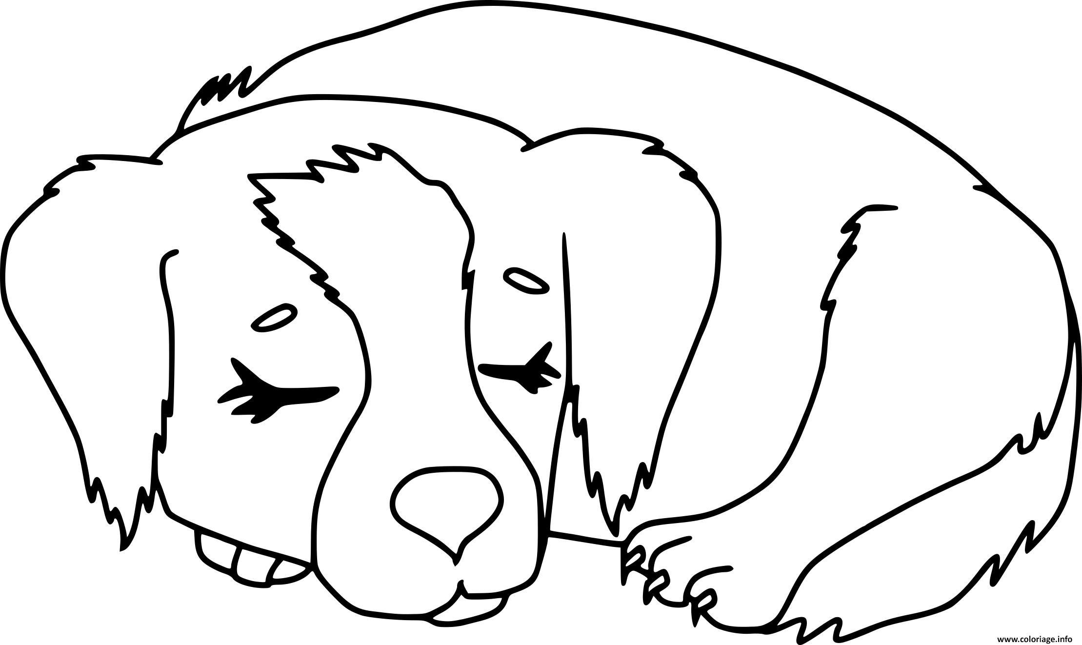 Dessin chien qui dort Coloriage Gratuit à Imprimer