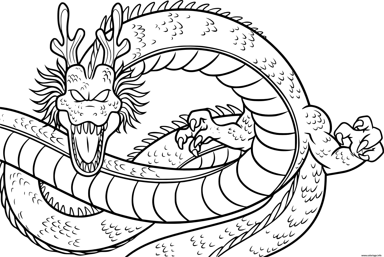 Dessin dragon de dragonballz Coloriage Gratuit à Imprimer