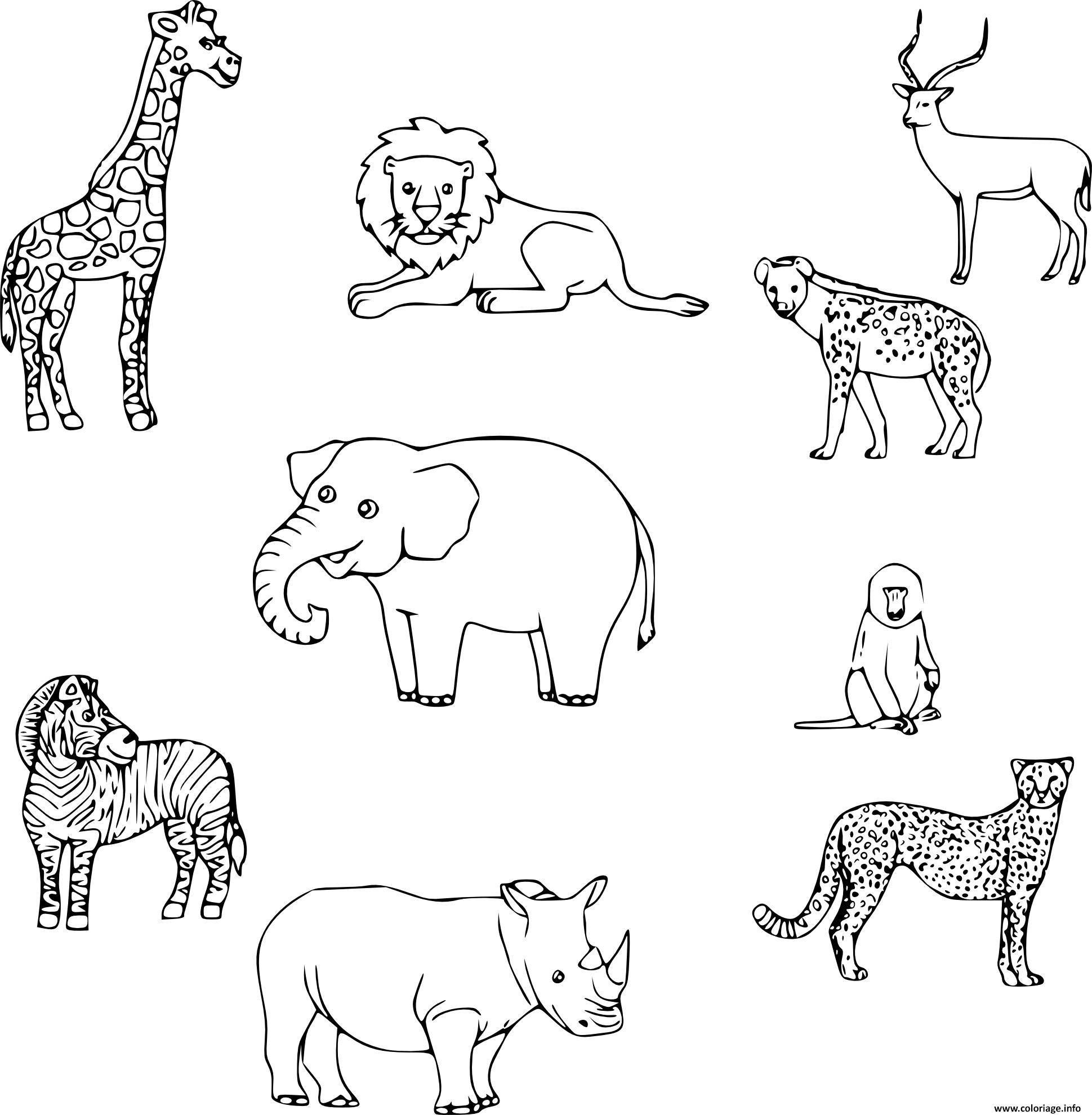 Impressionnant dessin colorier animaux - Coloriage afrique a imprimer ...
