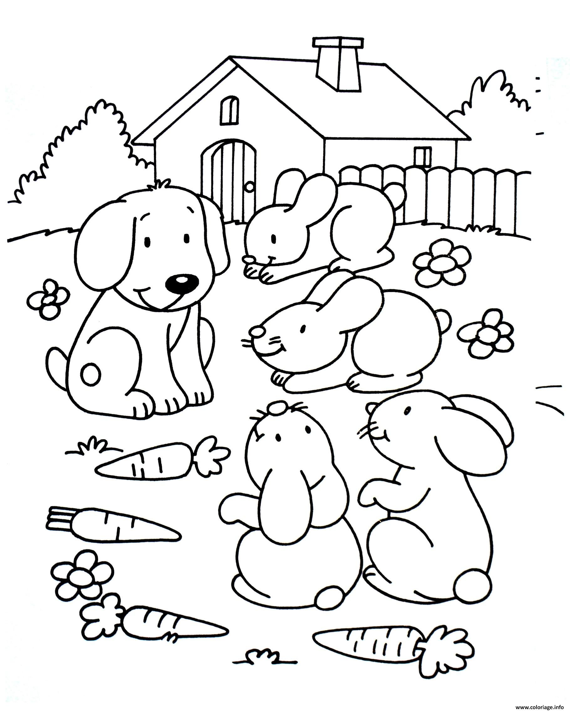 Coloriage lapins en compagnie du chien - Lapin en dessin ...