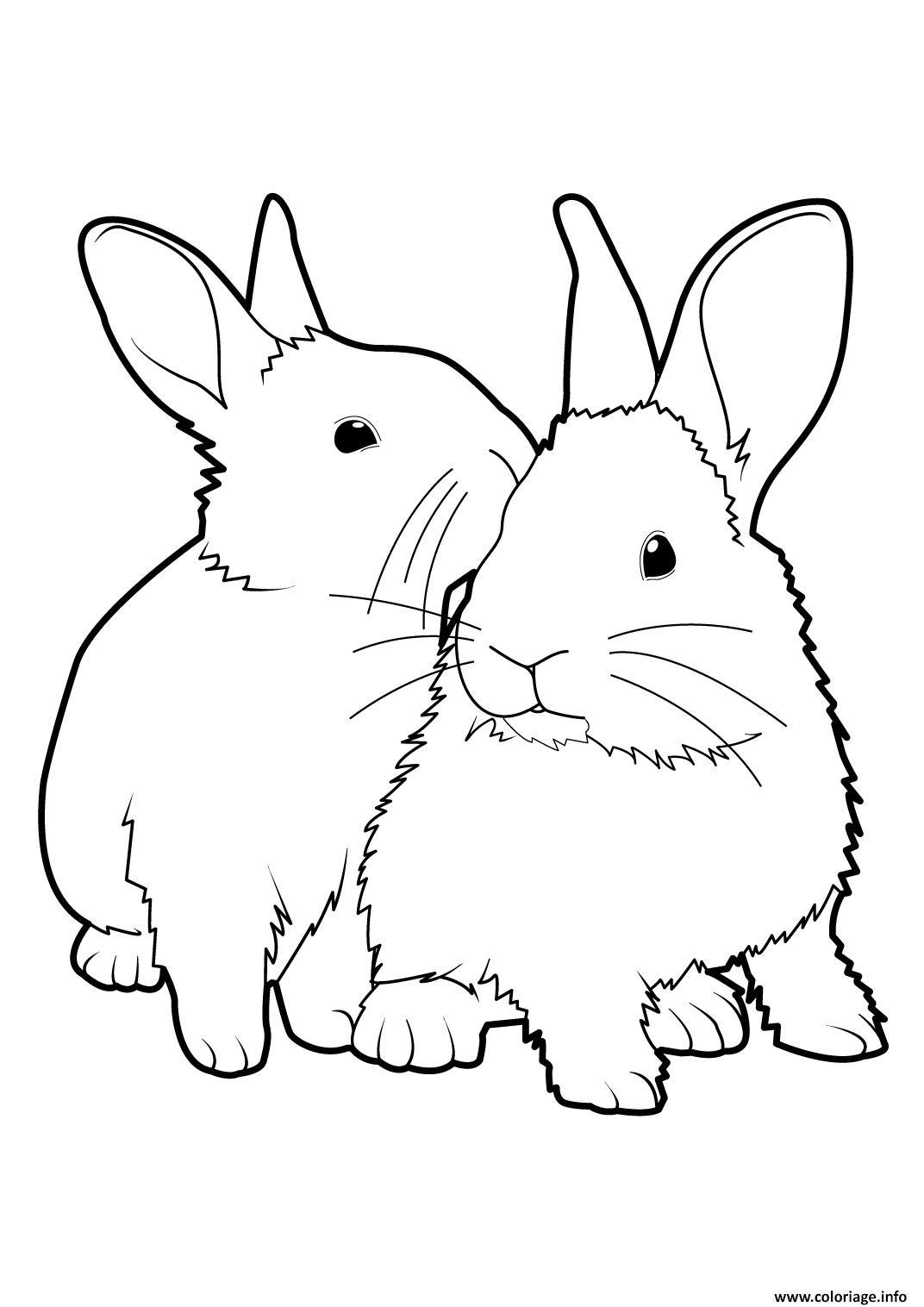 Dessin lapins ensemble realiste Coloriage Gratuit à Imprimer