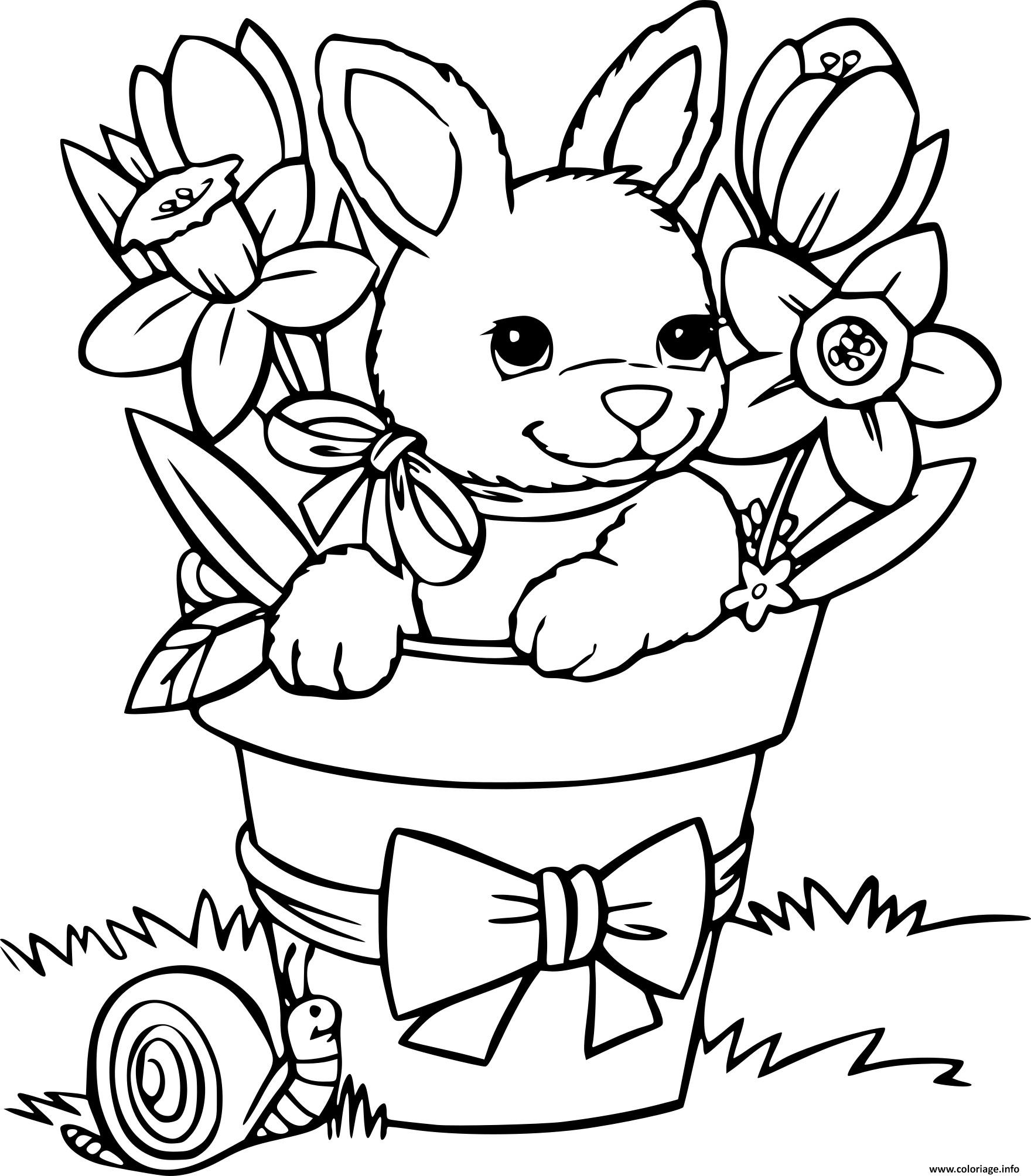 Coloriage lapin avec un escargot - Coloriages lapin ...
