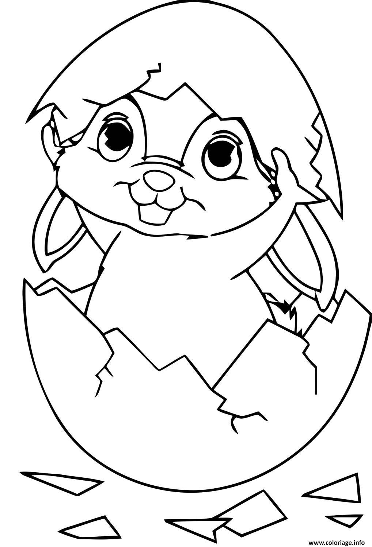 Coloriage Petit Lapin Craque Oeuf Dessin Lapin à imprimer