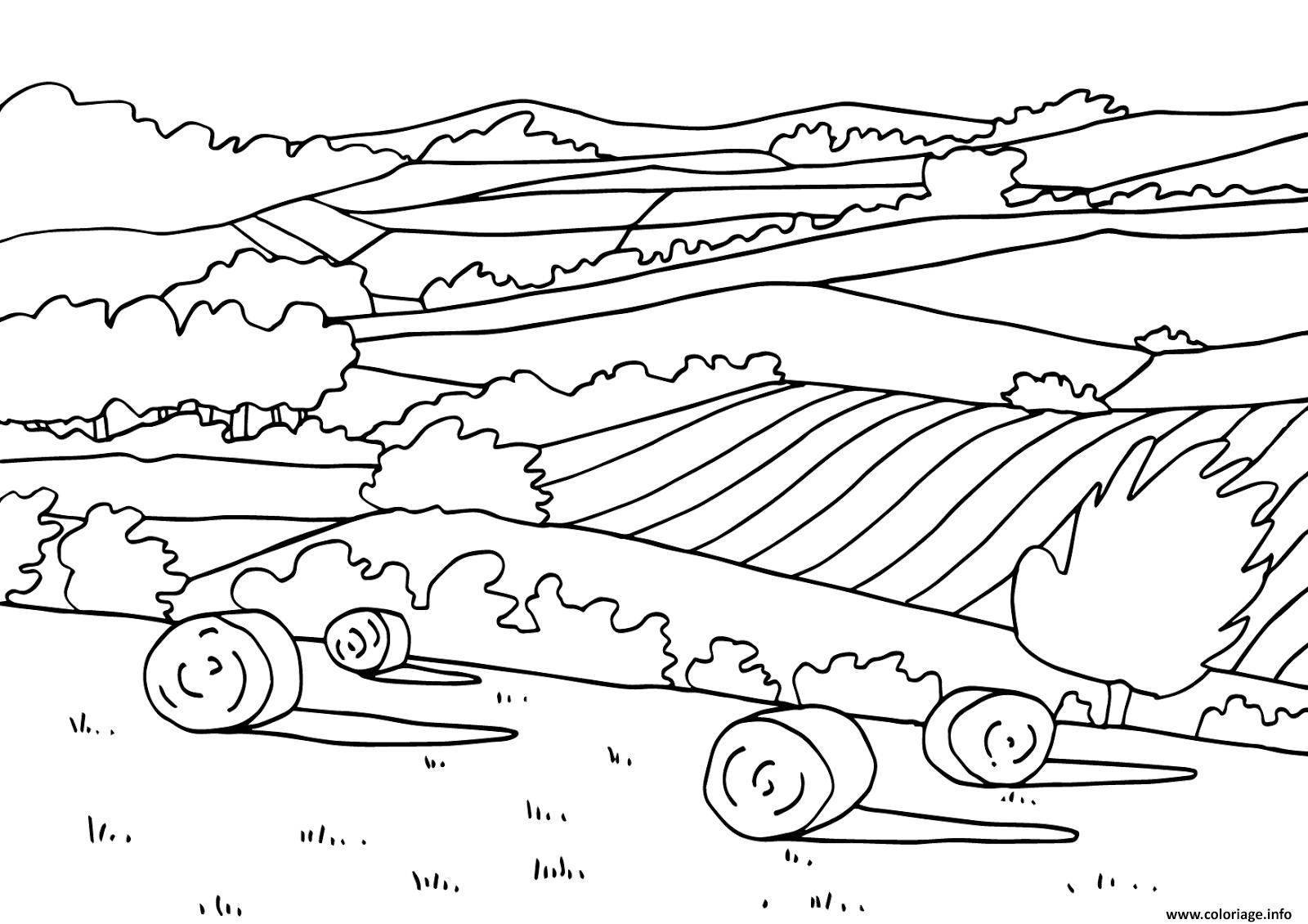 Coloriage paysage naturel plaines dessin - Dessin a colorier paysage ...