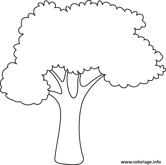 Coloriage Arbre Simple Facile Nature Dessin