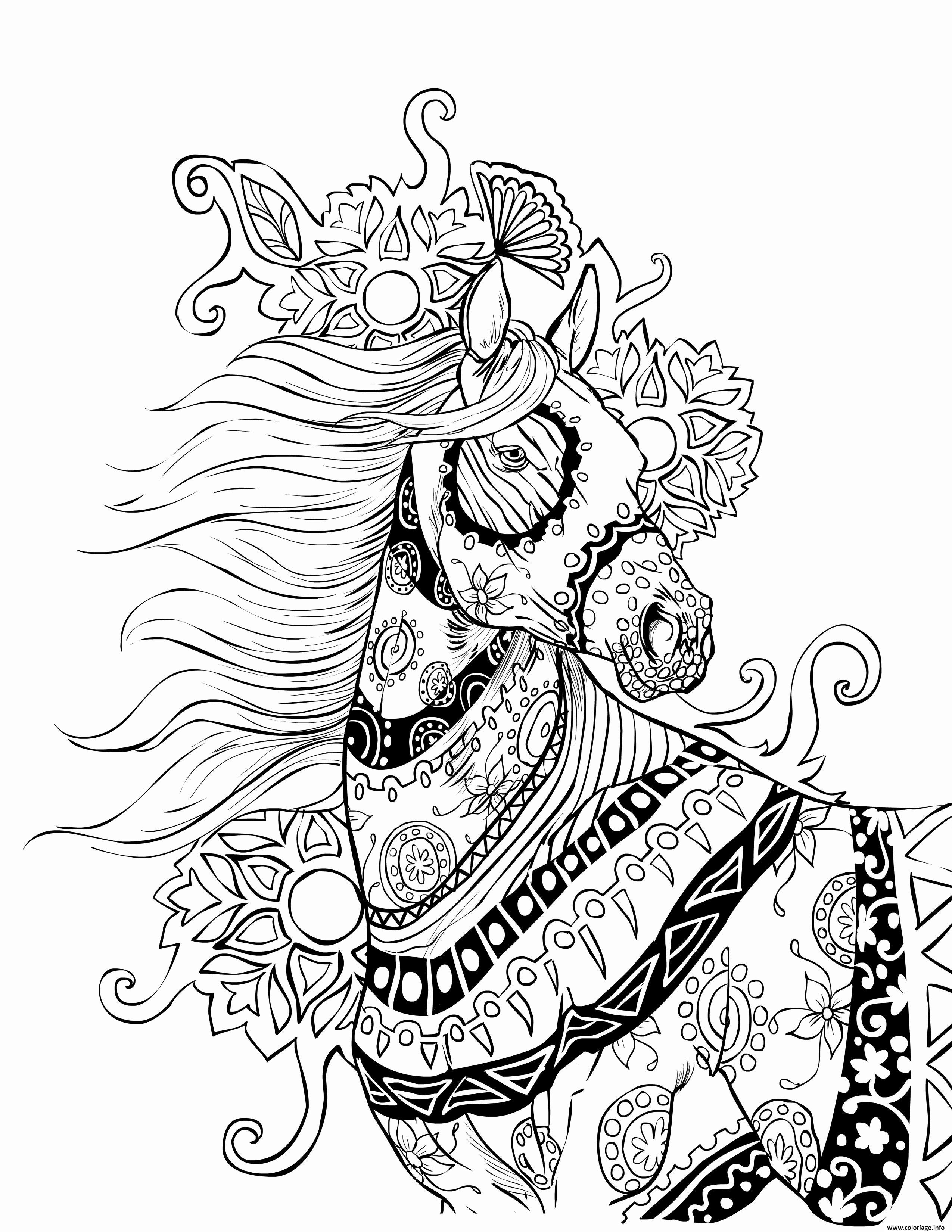 Coloriage incroyable cheval mandala adulte - Mandala de chevaux ...