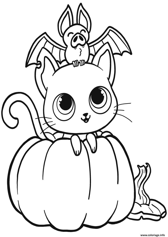 Coloriage Chauve Souris Chat Citrouille Halloween Dessin